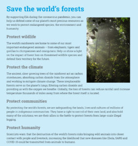 A charity appeal to save the Indonesian rainforest, written for the Environmental Investigation Agency